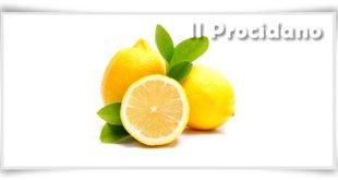 limoni e1460876889153