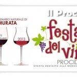 festa del vino 2013