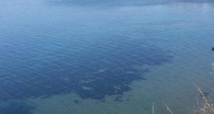 Mare di Procida foto di Goffredo e1587293223727