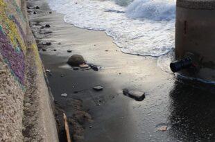 Chiaiolella spiaggia